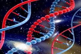 Cómo el universo crea y mantiene la vida