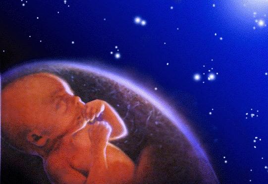 Admira el milagro de la vida