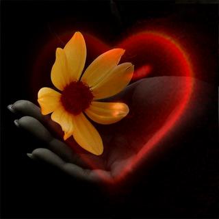 """Gregg Braden – """"Cuando los dos se unen, pensamiento y emoción, se vuelven uno: sentimiento"""""""