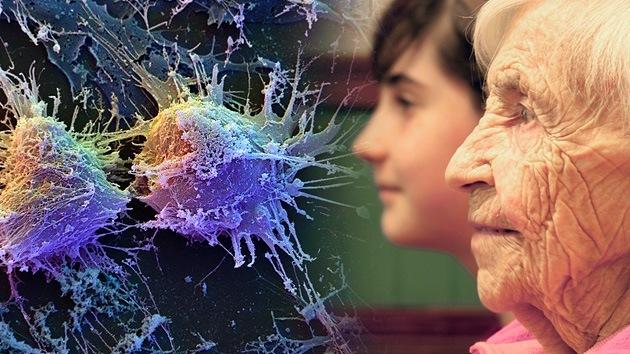 Los científicos hallan la clave del envejecimiento