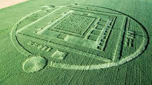 Sensacional Crop Circle en Salinas, California