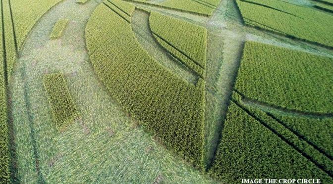 Crop circle apareció en la localidad de Winterbourne Stoke Down, Nr Stonehenge, Wiltshire