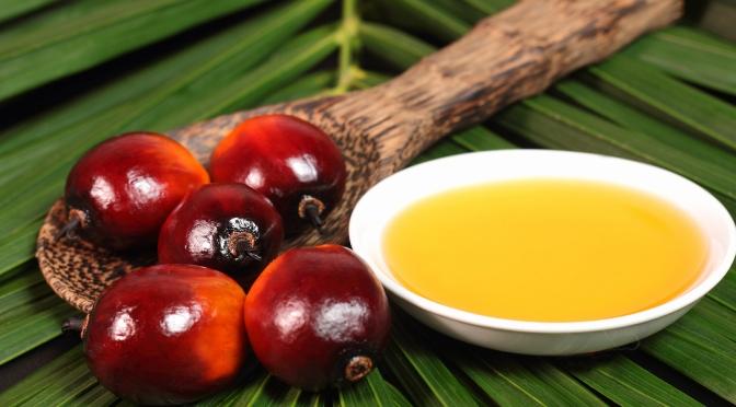 6 formas en las que el aceite de palma afecta al organismo y al medio ambiente