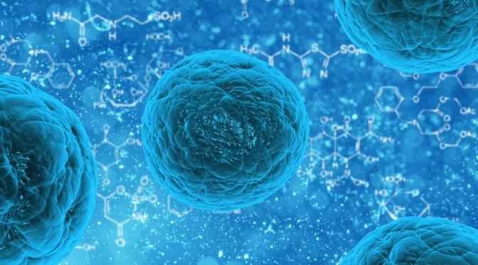 """""""Como un milagro"""": Científicos sorprendidos por un nuevo método para rejuvenecer las células humanas"""